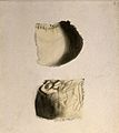 Bones of the skull; two figures. Ink and watercolour, after Wellcome V0008221EL.jpg