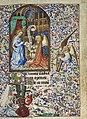 Book of Hours of Simon de Varie - KB 74 G37 - folio 025r.jpg