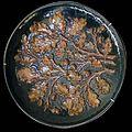 Borély-art nouveau-Cazin-feuilles de chêne.jpg
