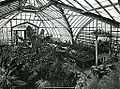 Botanical Hall conservatory, The Ohio State University.jpg