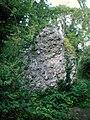 Bramber Castle masonry in moat.JPG