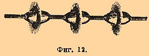 Brockhaus and Efron Encyclopedic Dictionary b63 329-1.jpg