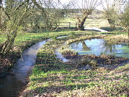 Brook, Brook - geograph.org.uk - 655936.jpg