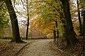 Brusel, Bois de la Cambre, cesta II.jpg