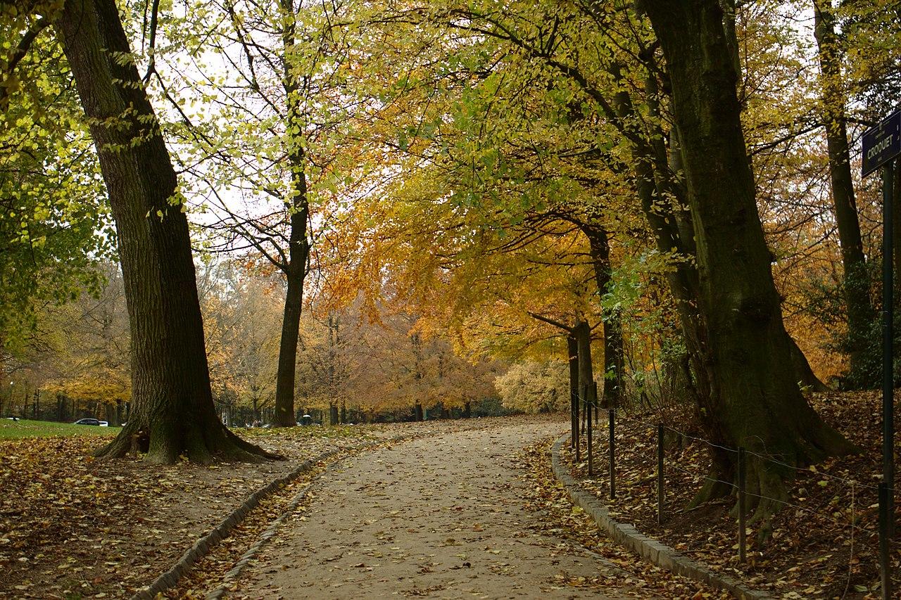 File brusel bois de la cambre cesta wikimedia for Bois de la chambre