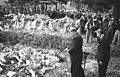 Bundesarchiv Bild 183-11291-0008, Treptower Schiffsunglück, Trauerfeier für Opfer.jpg