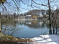 Buxheimer Weiher - panoramio - Richard Mayer.jpg