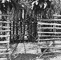 COLLECTIE TROPENMUSEUM Een yam opslag in de provincie Anambra Oost Nigeria TMnr 20016985.jpg