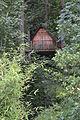 Cabane perchée dans l'arbre.JPG