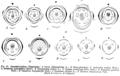 Caesalpinioideae diagrams Taub47.png