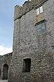 Cahir Castle, Castle St, Cahir (506788) (28628452265).jpg