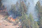 California's citizen soldiers and airmen help extinguish raging wildfires DVIDS653188.jpg