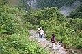 Camino al Nenjo Hgo - panoramio.jpg