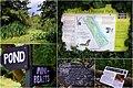 Camley St Natural Park (14708411058).jpg
