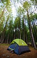 Camping in the Kumrat forest - Kumrat Valley.jpg
