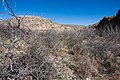 Carlsbad Caverns National Park and White's City, New Mexico, USA - 48344884731.jpg