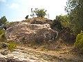 Castell de Tales DSCN2913.JPG