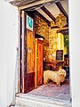 Castellar.Casa rural y perro de aguas andaluz.jpg