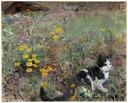 Cat on a flowery meadow (Bruno Liljefors) - Nationalmuseum - 149858.tif