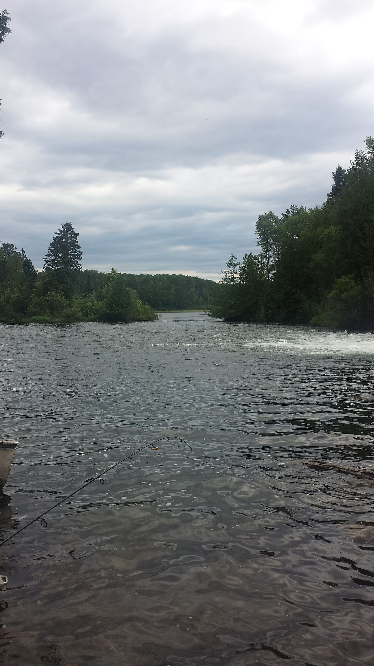 nestor falls chat sites Nestor falls ontario fishing and hunting store sub: $ 000: ship: $ 000  that goes for information disclosed on message boards, in chat areas - or even in email.