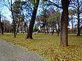 Centar, Skopje 1000, Macedonia (FYROM) - panoramio (280).jpg