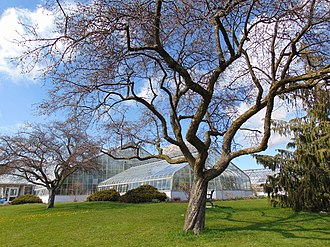 Eringate – Centennial – West Deane - Centennial Park is a large regional park that is home to a number of sports facilities, and a conservatory.