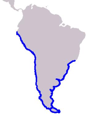 Burmeister's porpoise - Image: Cetacea range map Burmeister's Porpoise