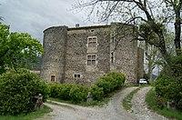 Château d'Entrevaux.JPG