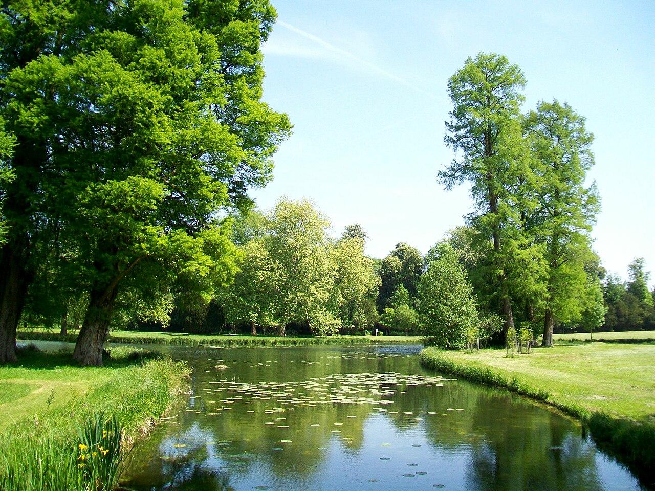 file ch teau de chantilly jardin anglais lac des cygnes On jardin anglais wiki