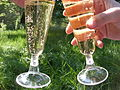 Champagne glasses.JPG