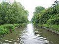 Chesterfield Canal - geograph.org.uk - 453828.jpg