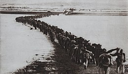 A long orderly line of heavily laden soldiers marching in pairs away from the camera down a road across an open expanse