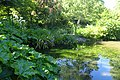 Christchurch Botanic Gardens kz05.jpg