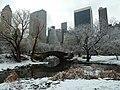 Christmas @ Central Park (11654457975).jpg