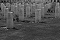 Cimitero seconda guerra mondiale - panoramio.jpg
