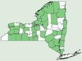 Circaea alpina ssp alpina NY-dist-map.png