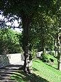 City walls, Chichester - geograph.org.uk - 2049482.jpg