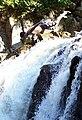Cliff jumping at Split Rock.jpg