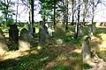 Cmentarz żydowski w Dobrodzieniu64.JPG