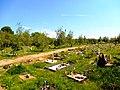 Cmentarz dla zwierząt w Toruniu.jpg