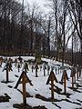 Cmentarz wojskowy z I wojny światowej na wzgórzu Pustki (Łużna) 7.JPG