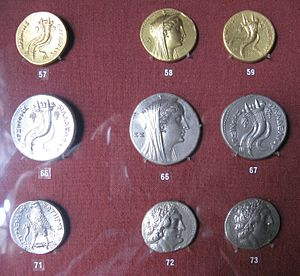 Coins of Reigns of Ptolemy II and Ptolemy III - Collection of J. Demetriou.jpg