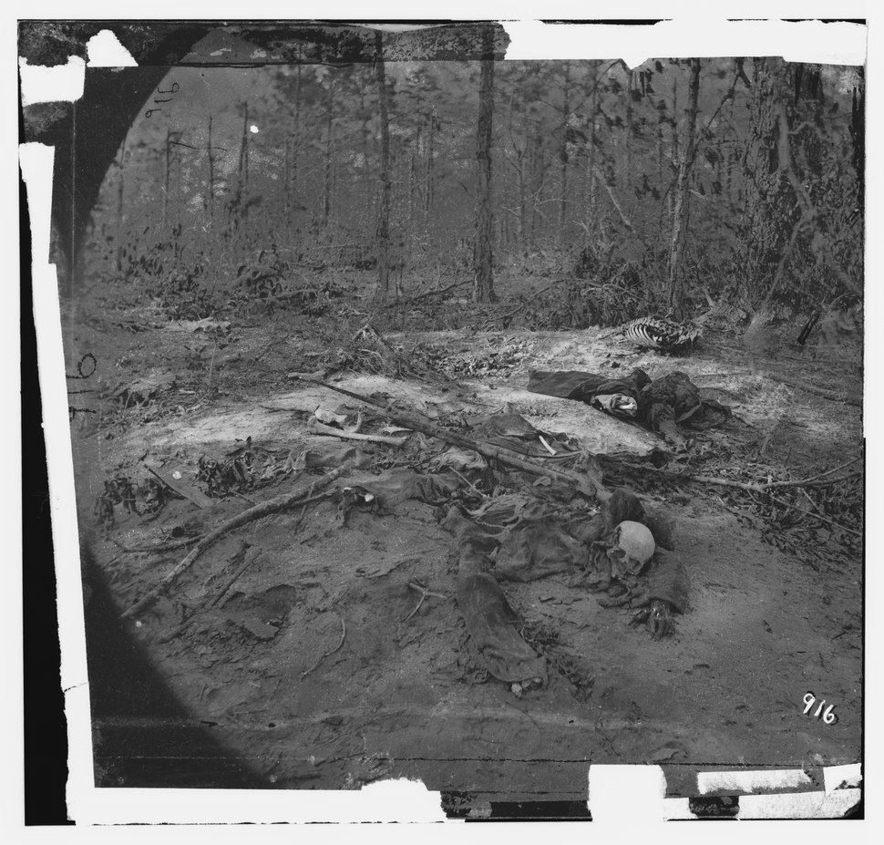 Cold Harbor, Va., vicinity. Unburied dead on the battlefield of Gaines' Mill LOC cwpb.01273
