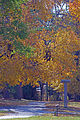 Colors on a paved trail (6344576731).jpg
