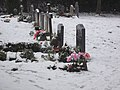 Colours amongst the snow in Hardwick churchyard - geograph.org.uk - 1635160.jpg