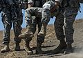 Combat engineers conduct air assault, patrol training 150718-A-TI382-948.jpg