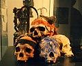 Consecrated skulls.jpg