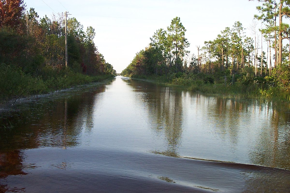 Bull Creek  Florida