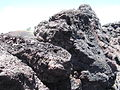Craters of the Moon National Monument - Idaho (14378117597).jpg