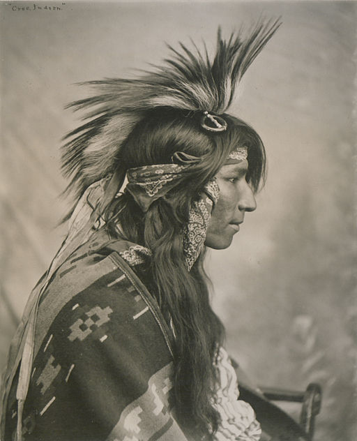 Cree Indian (HS85-10-13885)